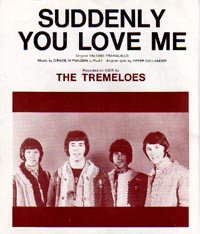 Suddenly You Love Me - The Tremeloes